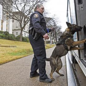 K9 Dog sniffing truck with female Officer